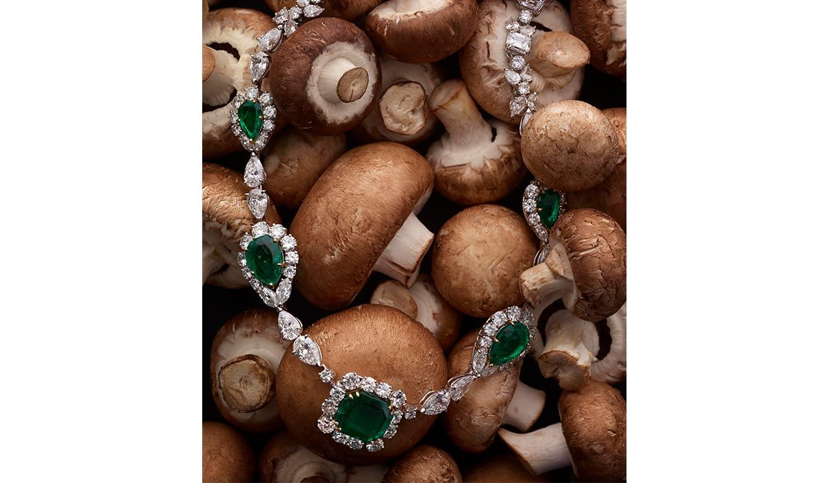 Collier Harry Winston - © Sarah Andelman and Koto Bolofo for Artcurial.jpg