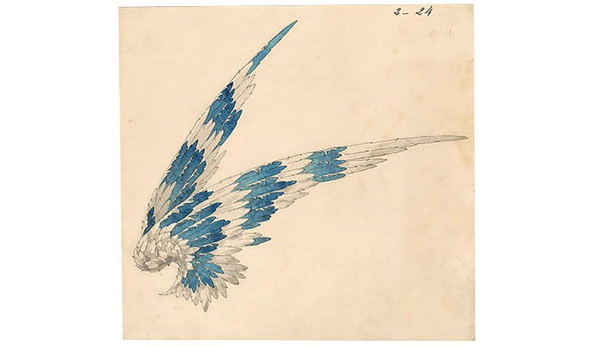 Preparatory drawing for the tiara wings project for Gertrude Vanderbilt, 1908