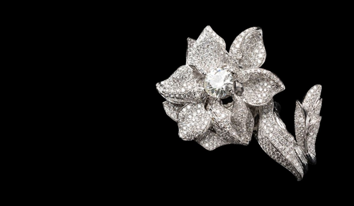 Posh collection brooch
